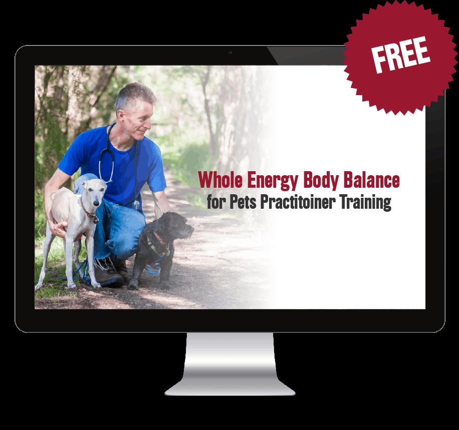Whole Energy Body Balance - 2